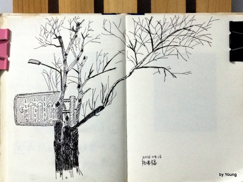 IMG_1637